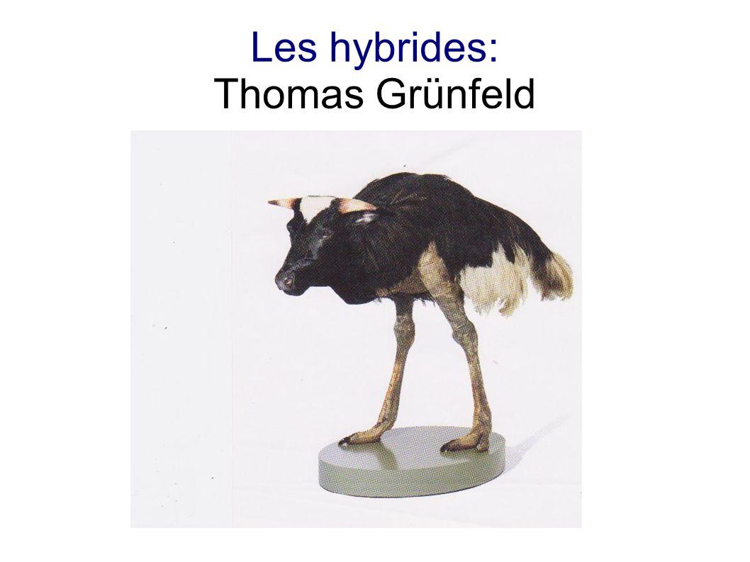 Les hybrides: Thomas Grünfeld