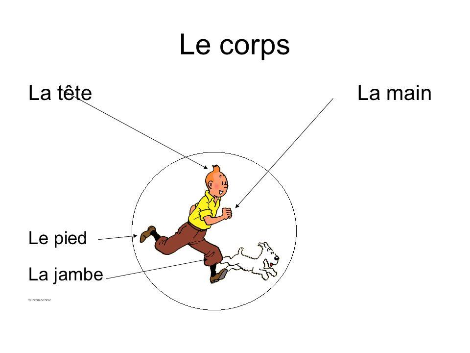Le corps La têteLa main Le pied La jambe http://membres.multimania.fr