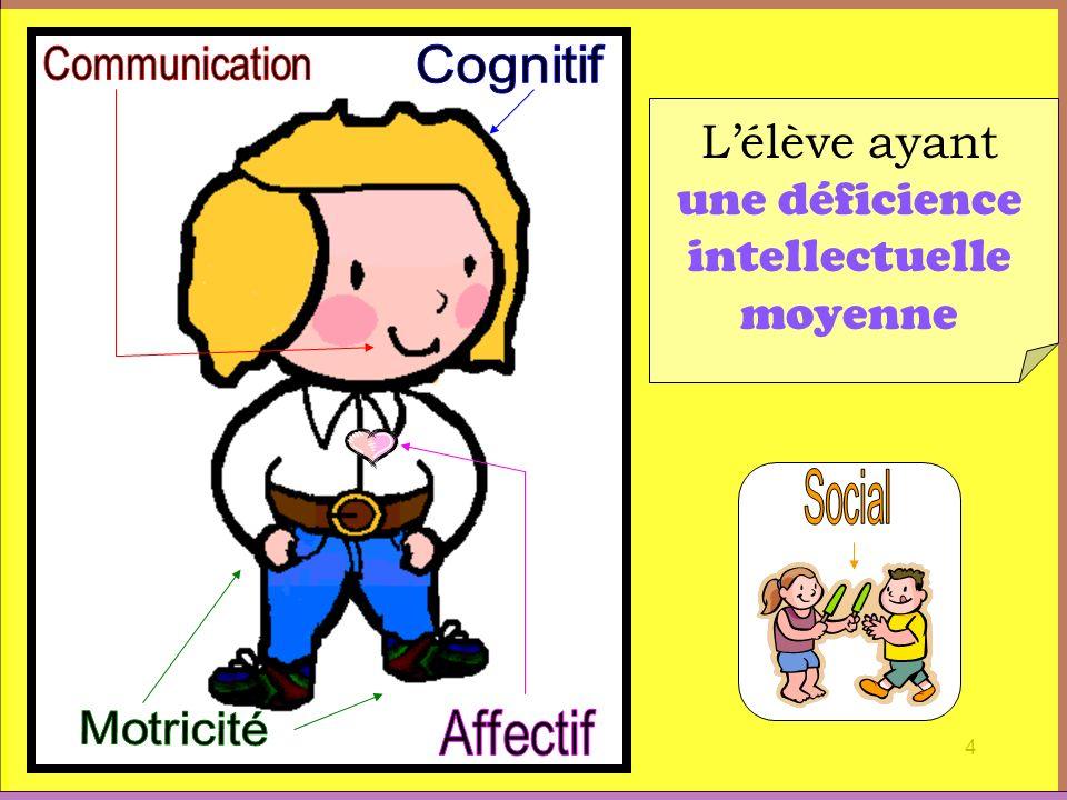 4 Lélève ayant une déficience intellectuelle moyenne