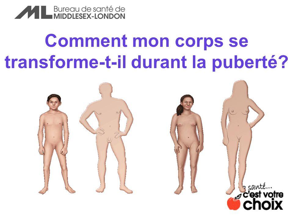 Comment mon corps se transforme-t-il durant la puberté?
