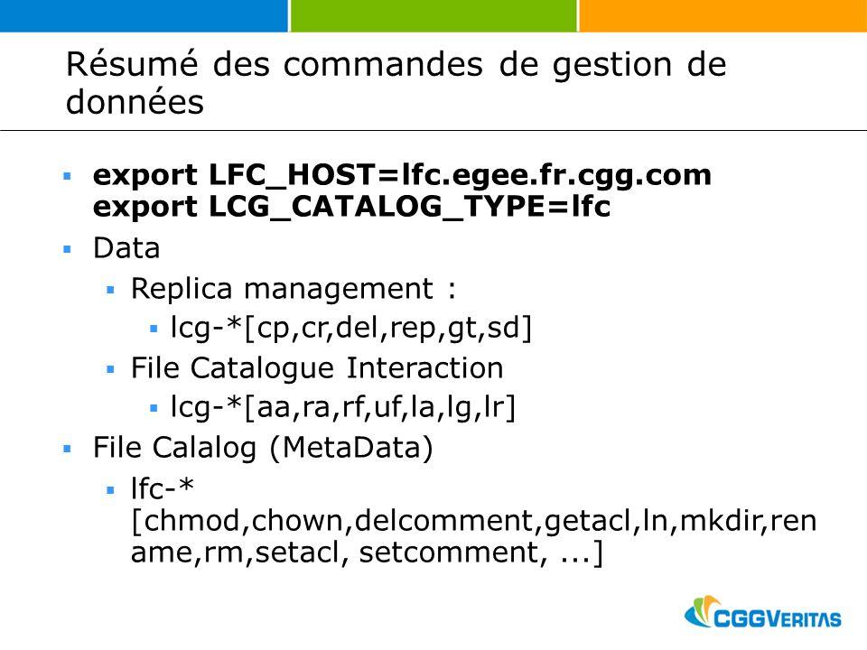 Résumé des commandes de gestion de données export LFC_HOST=lfc.egee.fr.cgg.com export LCG_CATALOG_TYPE=lfc Data Replica management : lcg-*[cp,cr,del,rep,gt,sd] File Catalogue Interaction lcg-*[aa,ra,rf,uf,la,lg,lr] File Calalog (MetaData) lfc-* [chmod,chown,delcomment,getacl,ln,mkdir,ren ame,rm,setacl, setcomment,...]