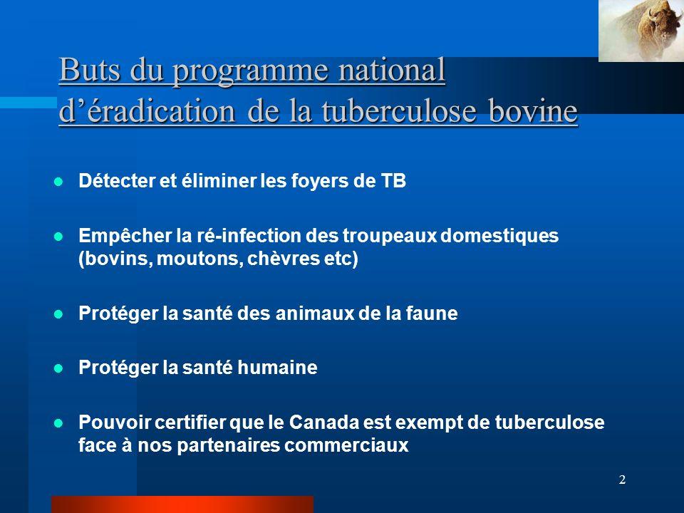 2 Buts du programme national déradication de la tuberculose bovine Détecter et éliminer les foyers de TB Empêcher la ré-infection des troupeaux domestiques (bovins, moutons, chèvres etc) Protéger la santé des animaux de la faune Protéger la santé humaine Pouvoir certifier que le Canada est exempt de tuberculose face à nos partenaires commerciaux