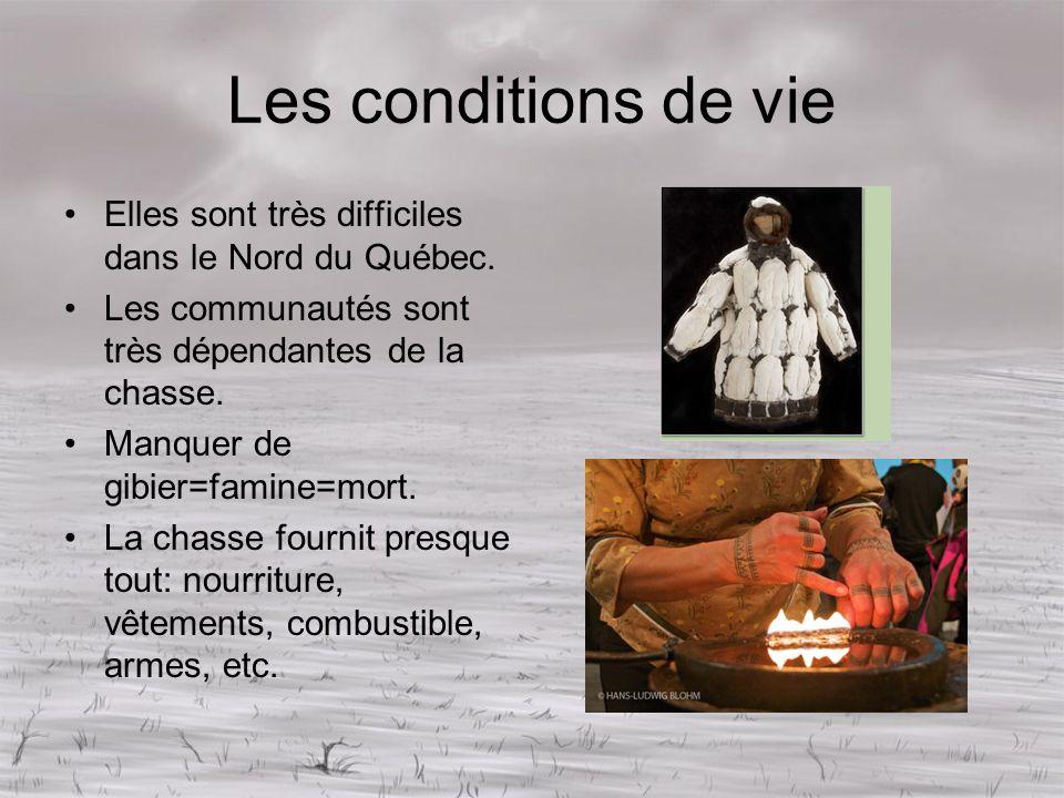 Les conditions de vie Elles sont très difficiles dans le Nord du Québec. Les communautés sont très dépendantes de la chasse. Manquer de gibier=famine=