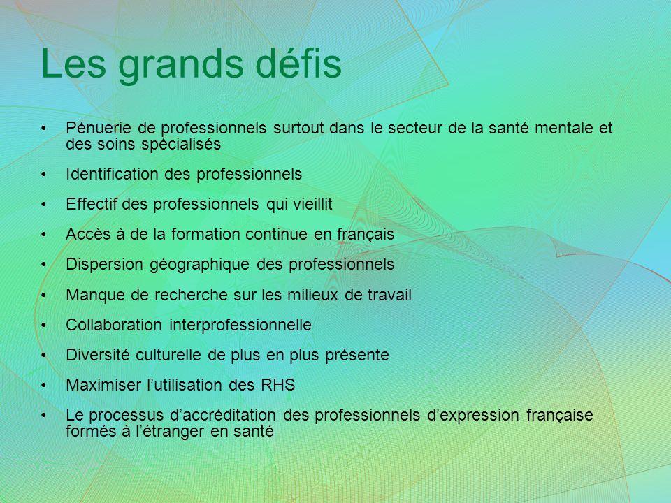 Les grands défis Pénuerie de professionnels surtout dans le secteur de la santé mentale et des soins spécialisés Identification des professionnels Eff