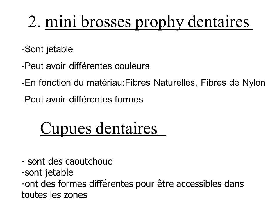 2. mini brosses prophy dentaires -Sont jetable -Peut avoir différentes couleurs -En fonction du matériau:Fibres Naturelles, Fibres de Nylon -Peut avoi