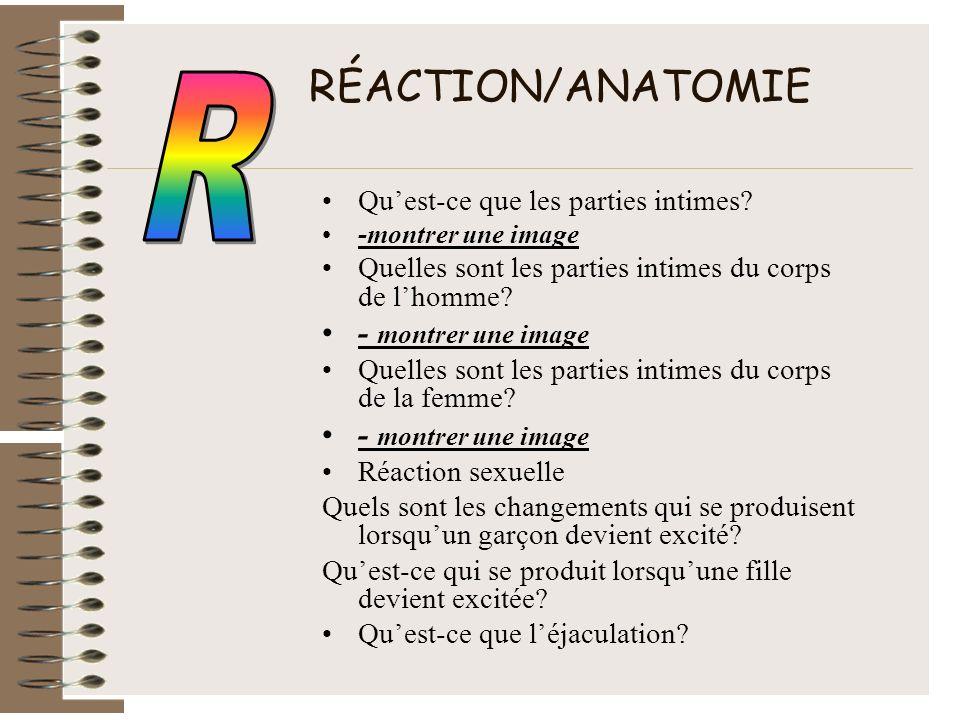 RÉACTION/ANATOMIE Quest-ce que les parties intimes? -montrer une image Quelles sont les parties intimes du corps de lhomme? - montrer une image Quelle
