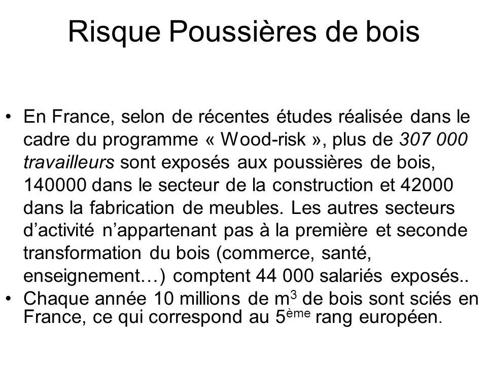 Risque Poussières de bois En France, selon de récentes études réalisée dans le cadre du programme « Wood-risk », plus de 307 000 travailleurs sont exposés aux poussières de bois, 140000 dans le secteur de la construction et 42000 dans la fabrication de meubles.
