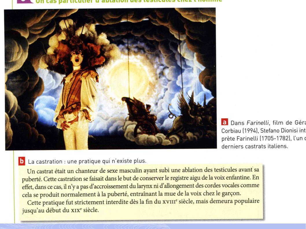 « Une pratique artistique » : les castrats 1-Je donne la profession qu exerçait Farinelli Farinelli était un chanteur.
