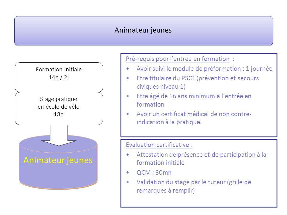 Animateur jeunes Pré-requis pour lentrée en formation : Avoir suivi le module de préformation : 1 journée Etre titulaire du PSC1 (prévention et secour