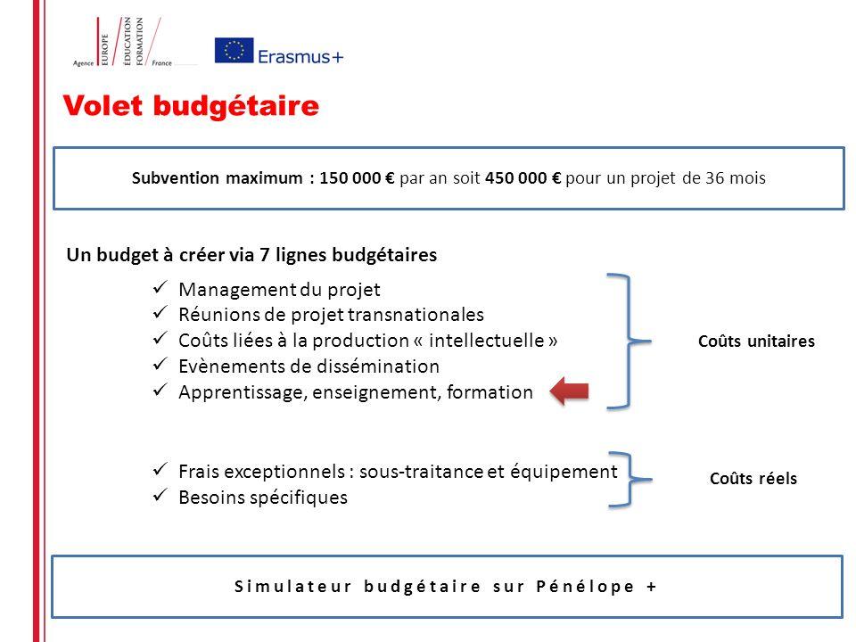 Volet budgétaire Un budget à créer via 7 lignes budgétaires Management du projet Réunions de projet transnationales Coûts liées à la production « inte