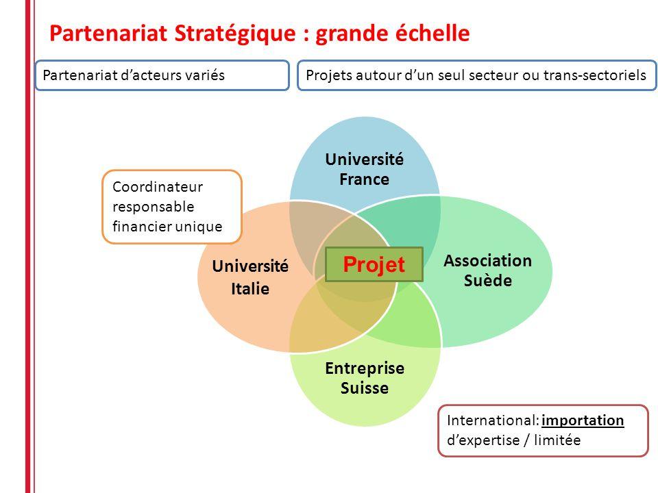 Partenariat Stratégique : grande échelle Université France Association Suède Entreprise Suisse Université Italie Projet International: importation dex