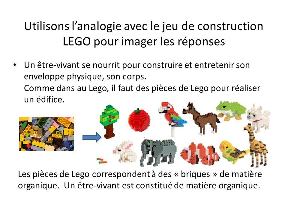 Utilisons lanalogie avec le jeu de construction LEGO pour imager les réponses Un être-vivant se nourrit pour construire et entretenir son enveloppe ph