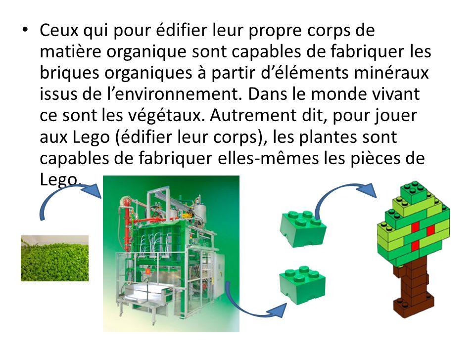 Ceux qui pour édifier leur propre corps de matière organique sont capables de fabriquer les briques organiques à partir déléments minéraux issus de le