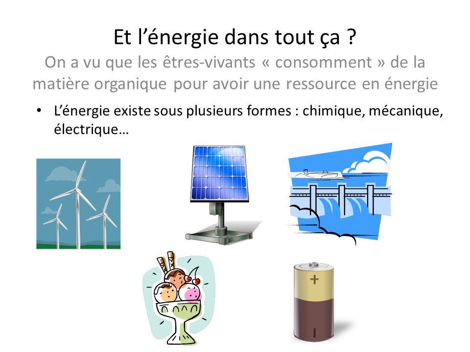 Et lénergie dans tout ça ? On a vu que les êtres-vivants « consomment » de la matière organique pour avoir une ressource en énergie Lénergie existe so