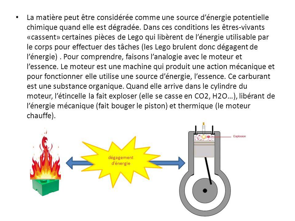 La matière peut être considérée comme une source dénergie potentielle chimique quand elle est dégradée. Dans ces conditions les êtres-vivants «cassent