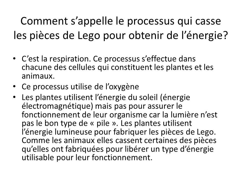Comment sappelle le processus qui casse les pièces de Lego pour obtenir de lénergie? Cest la respiration. Ce processus seffectue dans chacune des cell