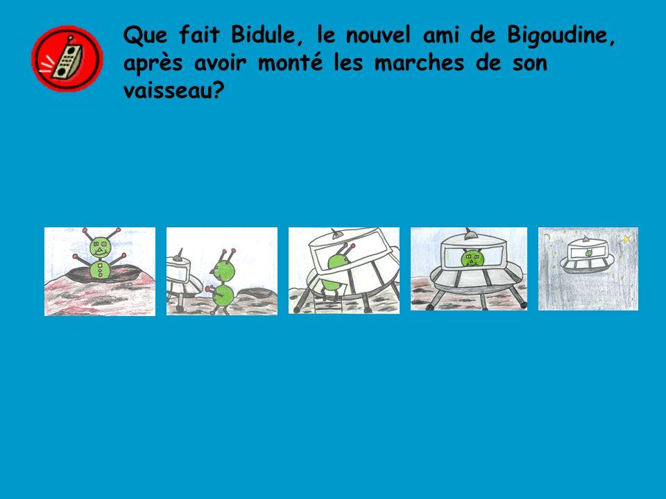 Que fait Bidule, le nouvel ami de Bigoudine, après avoir monté les marches de son vaisseau?