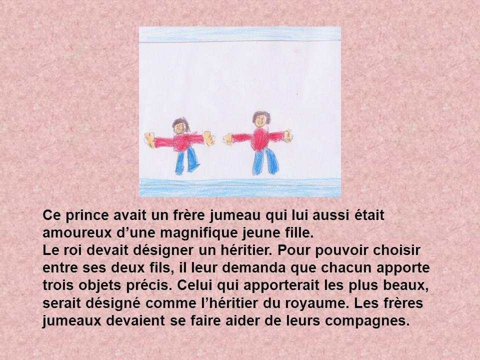 Ce prince avait un frère jumeau qui lui aussi était amoureux dune magnifique jeune fille. Le roi devait désigner un héritier. Pour pouvoir choisir ent