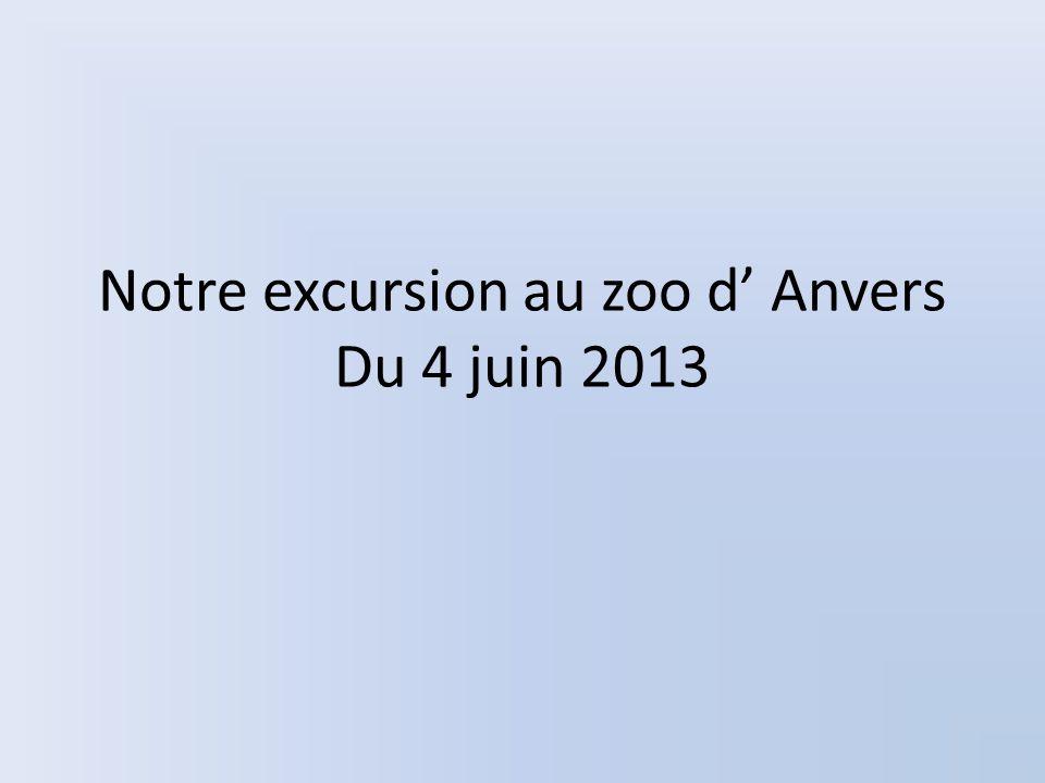 Notre excursion au zoo d Anvers Du 4 juin 2013