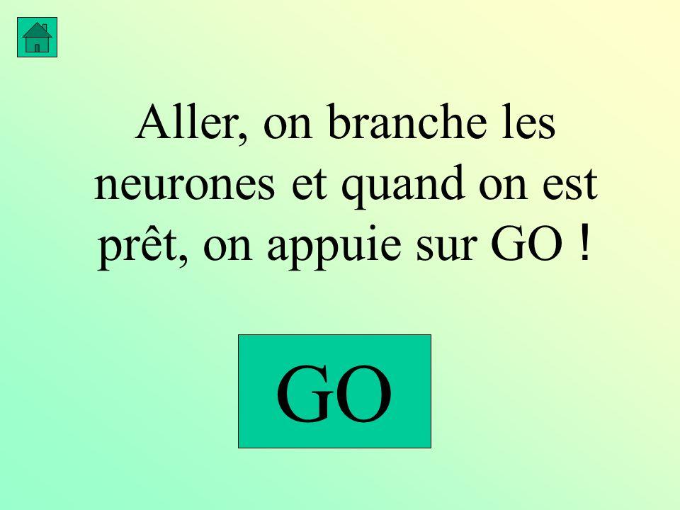 Aller, on branche les neurones et quand on est prêt, on appuie sur GO ! GO