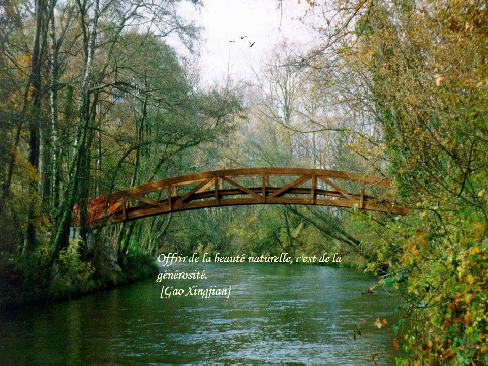 Musique: Richard Clayderman « What a wonderful world » Images sur le net