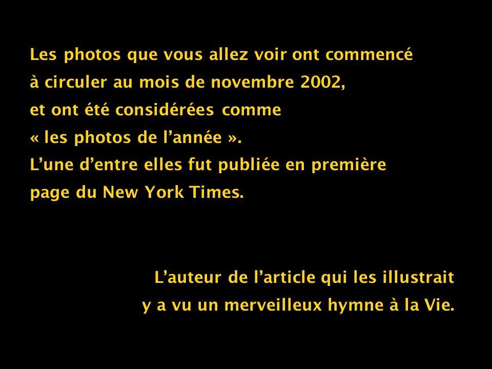 Les photos que vous allez voir ont commencé à circuler au mois de novembre 2002, et ont été considérées comme « les photos de lannée ». Lune dentre el