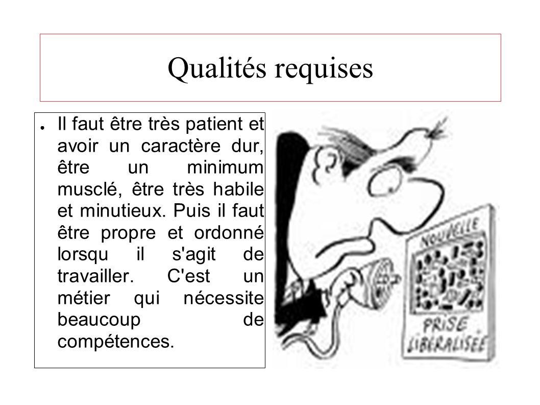Qualités requises Il faut être très patient et avoir un caractère dur, être un minimum musclé, être très habile et minutieux.