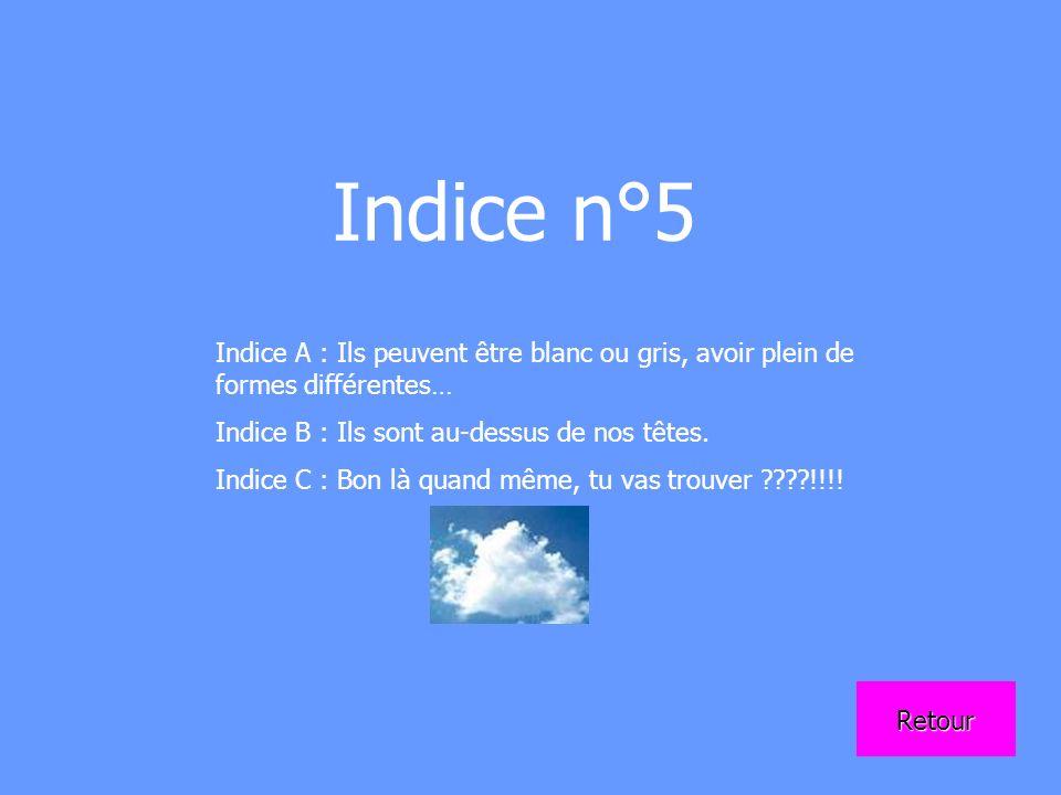 Indice n°5 Indice A : Ils peuvent être blanc ou gris, avoir plein de formes différentes… Indice B : Ils sont au-dessus de nos têtes. Indice C : Bon là