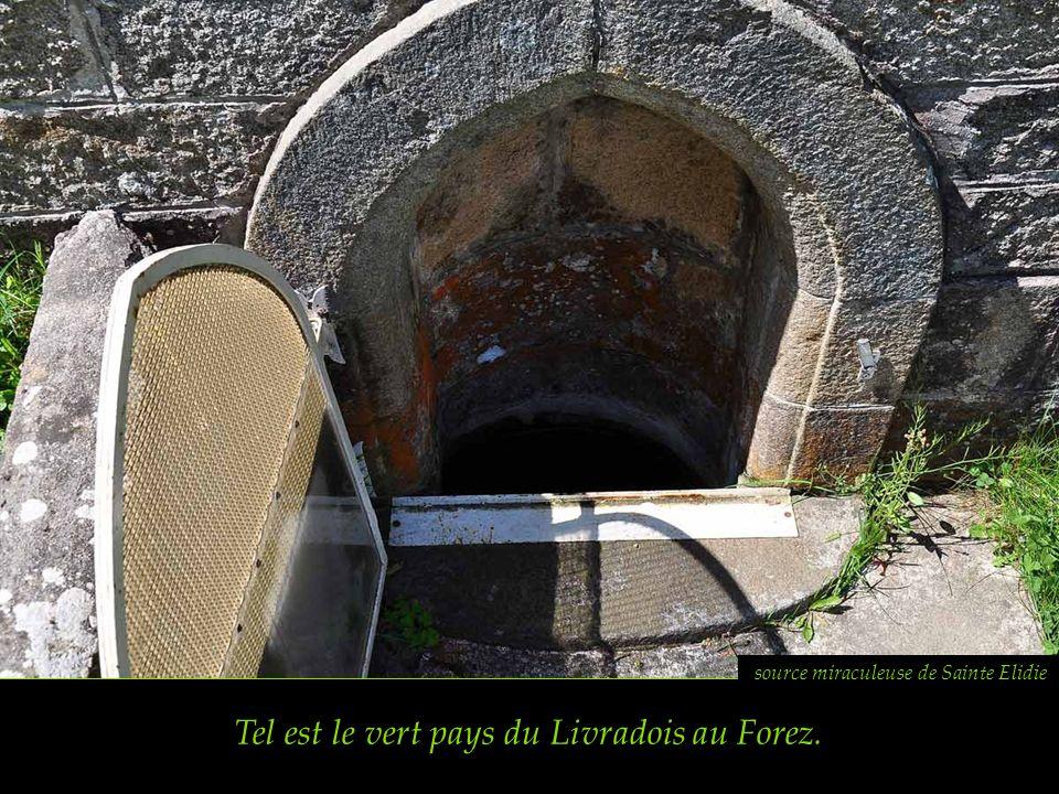 Tel est le vert pays du Livradois au Forez.