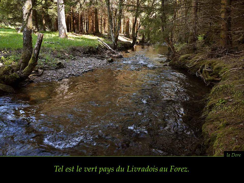source miraculeuse de Sainte Elidie