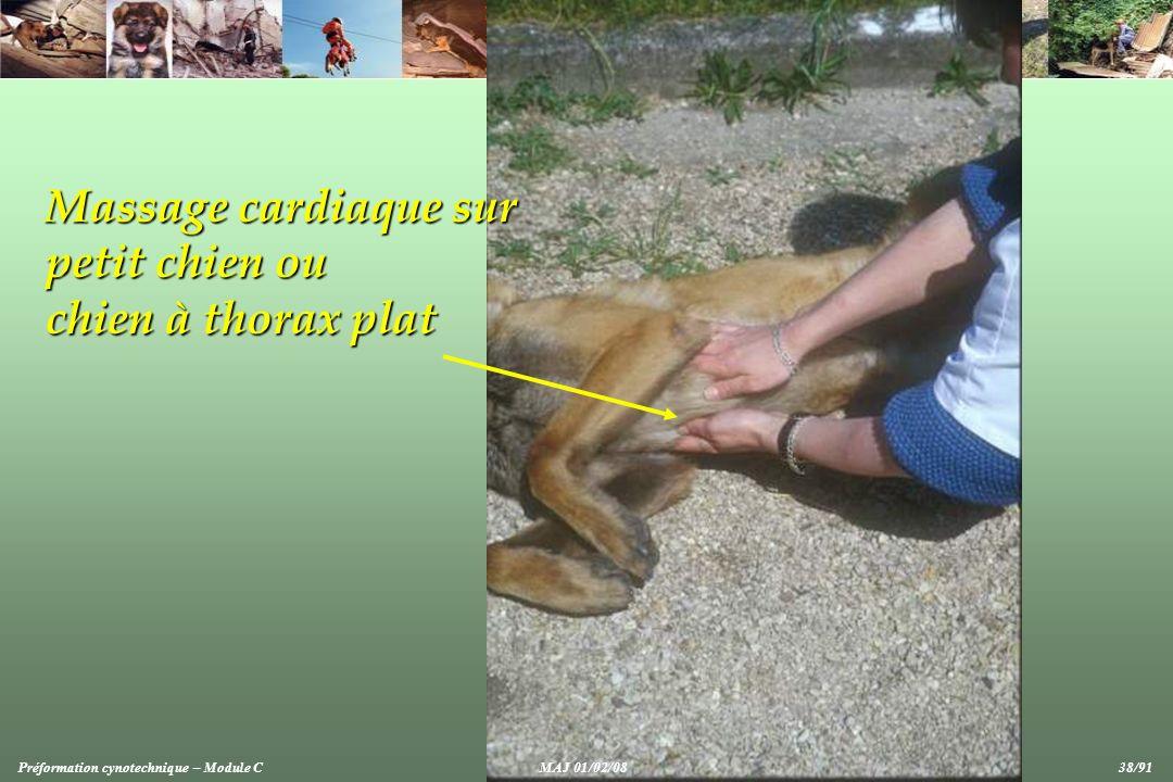 Massage cardiaque sur petit chien ou chien à thorax plat Préformation cynotechnique – Module CMAJ 01/02/08 38/91