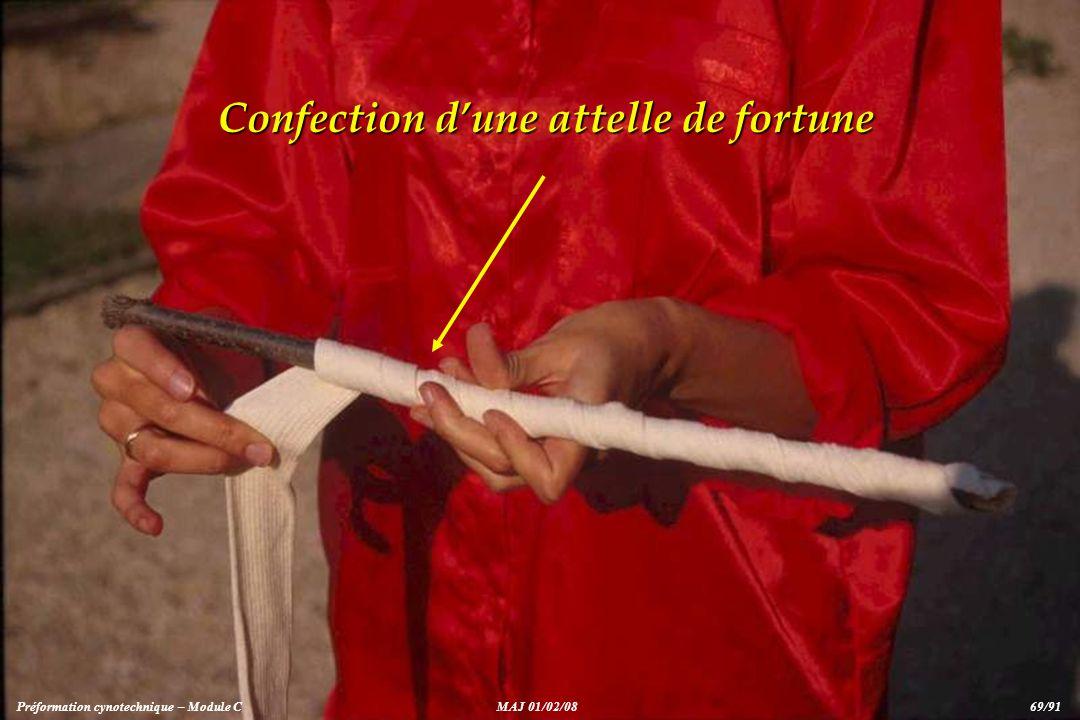 Confection dune attelle de fortune Préformation cynotechnique – Module CMAJ 01/02/08 69/91