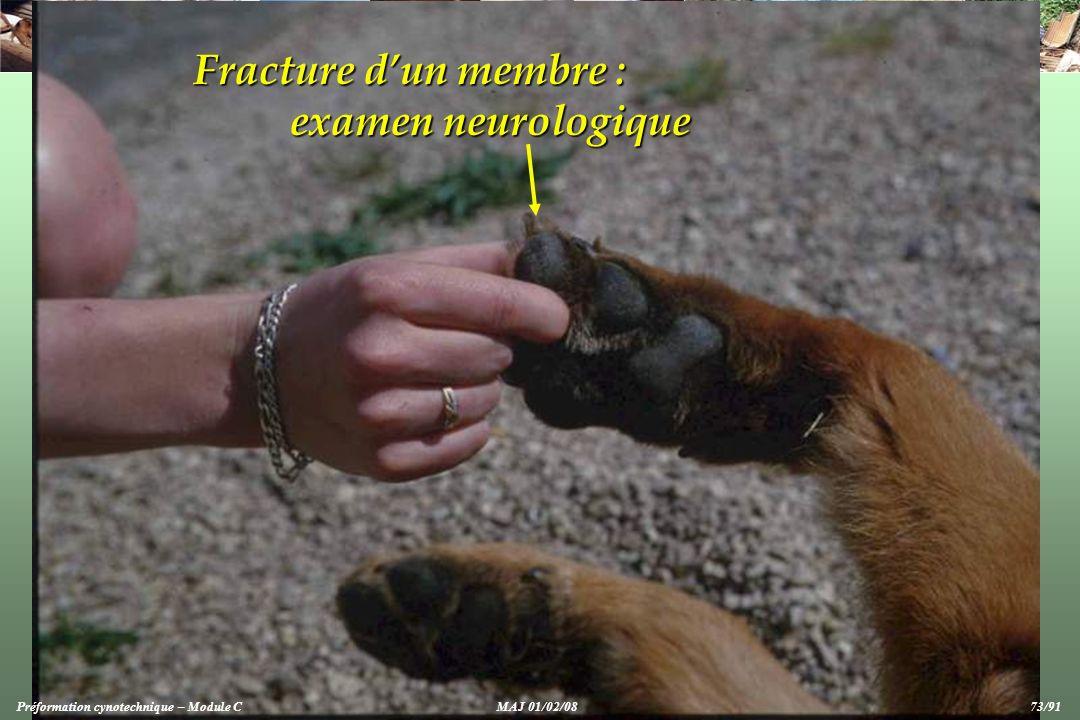 Fracture dun membre : examen neurologique Préformation cynotechnique – Module CMAJ 01/02/08 73/91