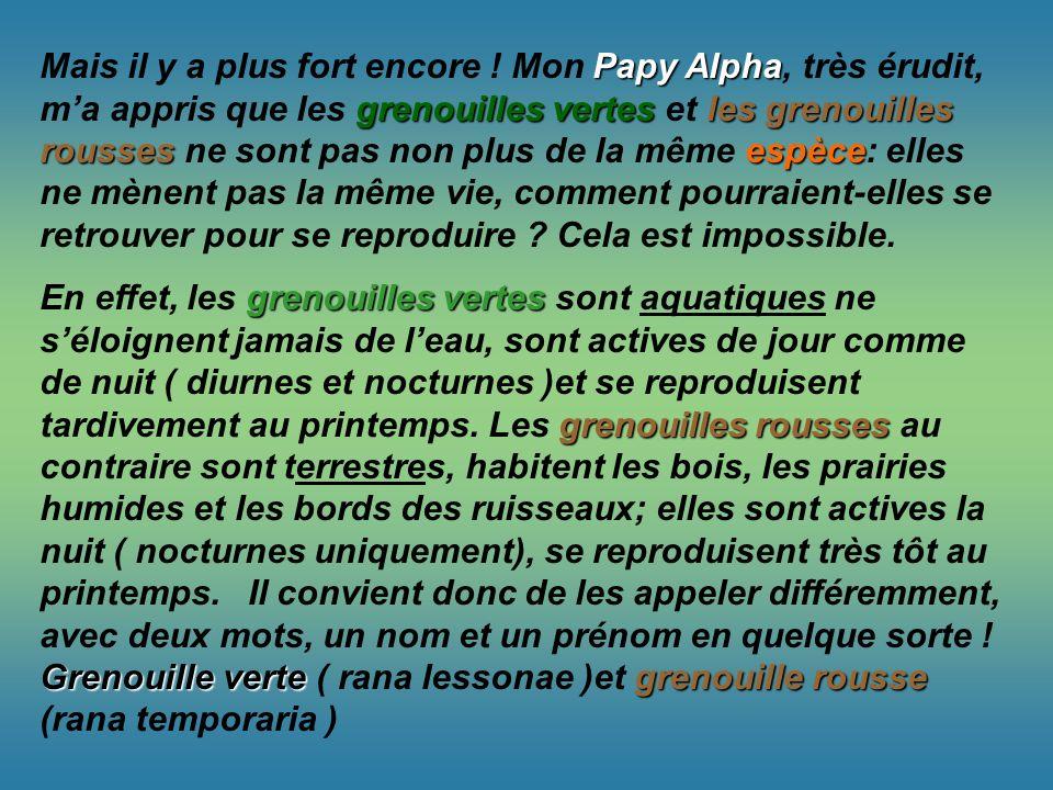 Papy Alpha grenouilles vertesles grenouilles roussesespèce Mais il y a plus fort encore ! Mon Papy Alpha, très érudit, ma appris que les grenouilles v