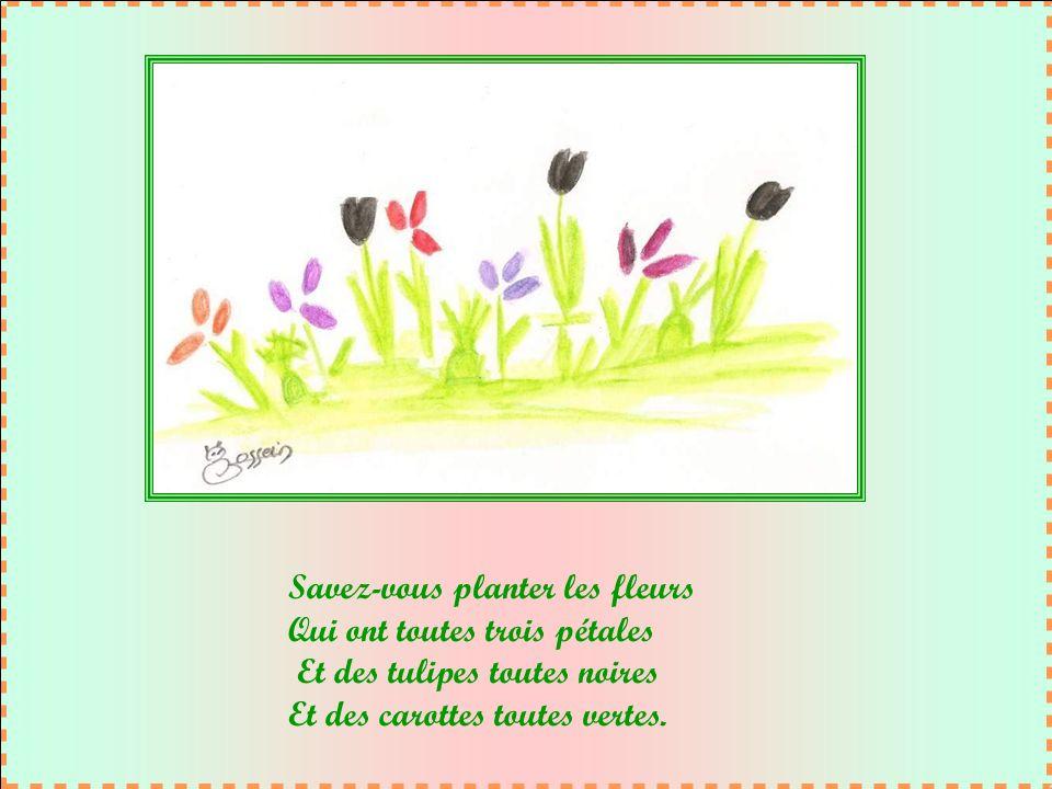 Savez-vous planter les fleurs Qui ont toutes trois pétales Et des tulipes toutes noires Et des carottes toutes vertes.