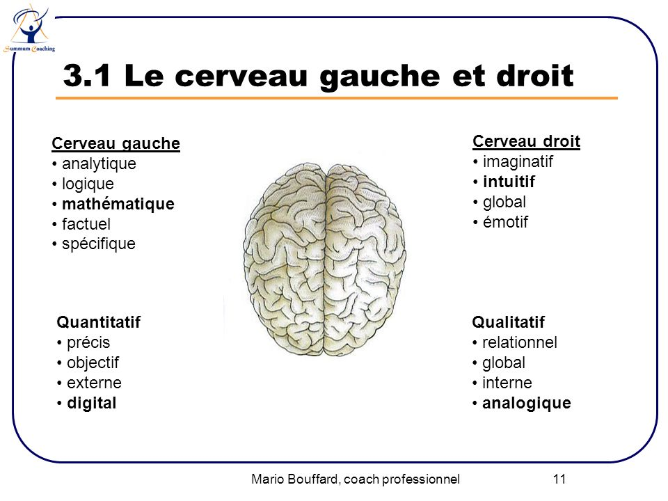 Mario Bouffard, coach professionnel 11 3.1 Le cerveau gauche et droit Cerveau gauche analytique logique mathématique factuel spécifique Cerveau droit