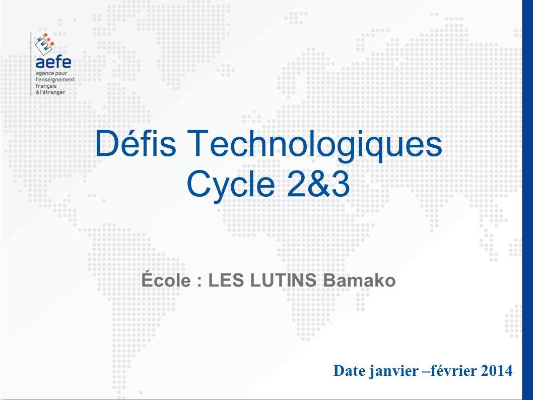 Défis Technologiques Cycle 2&3 École : LES LUTINS Bamako Date janvier –février 2014