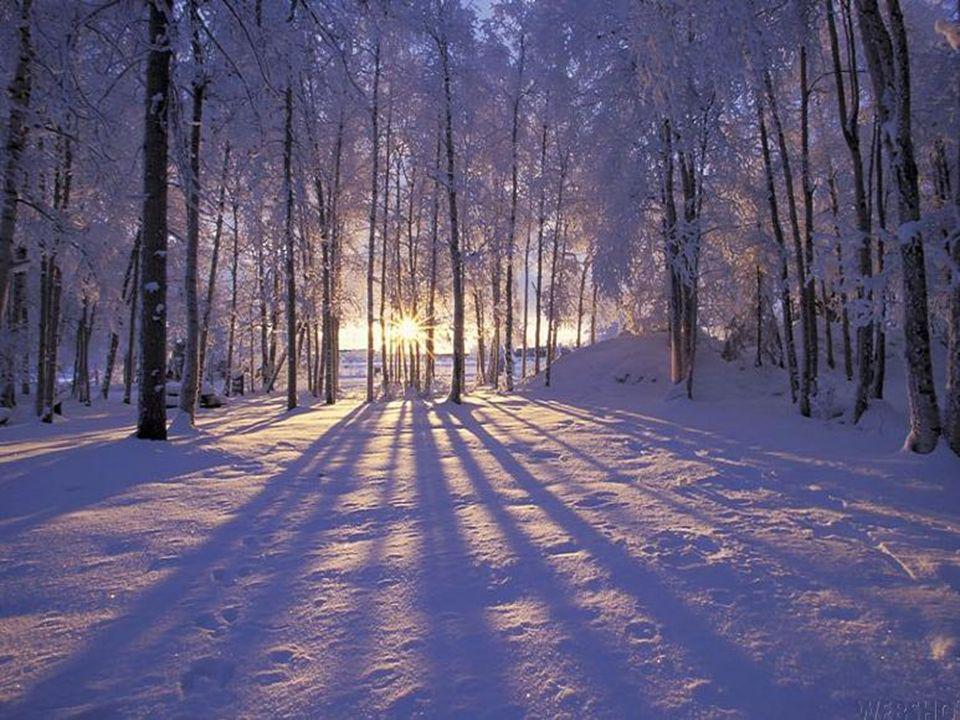 Pour les hivers que nous avons traversés, pour les temps de dépouillement et dépreuves où mystérieusement une autre saison de vie se prépare, béni soi
