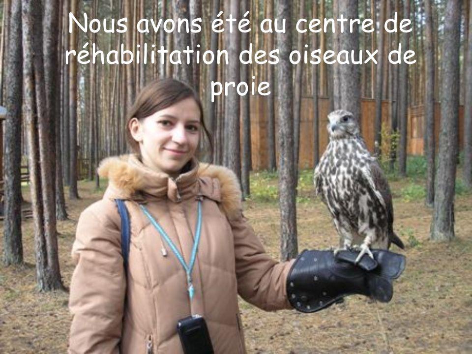 Nous avons été au centre de réhabilitation des oiseaux de proie
