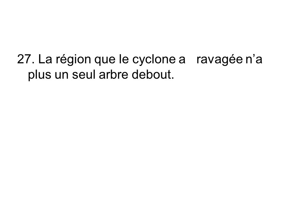 27. La région que le cyclone a ravagée na plus un seul arbre debout.