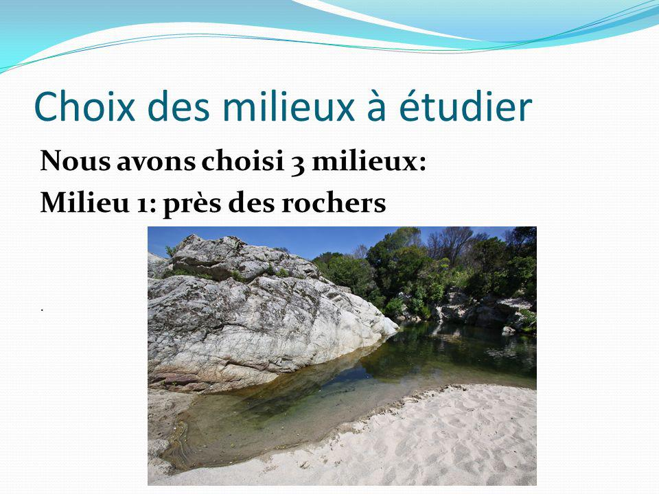 Choix des milieux à étudier Nous avons choisi 3 milieux: Milieu 1: près des rochers.