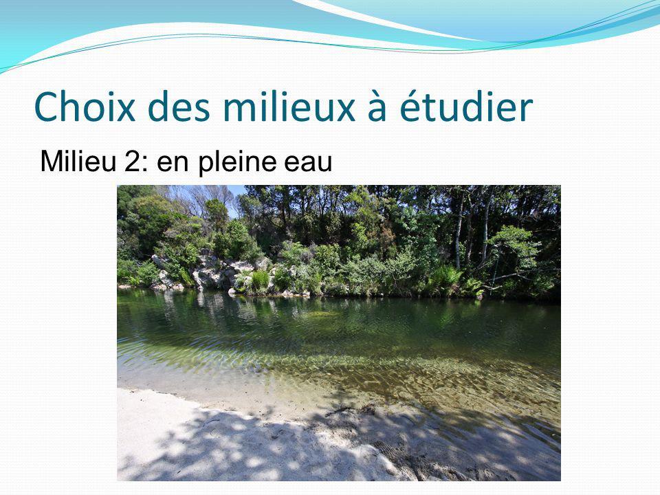 Choix des milieux à étudier Milieu 2: en pleine eau