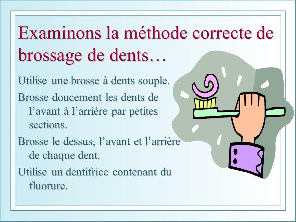 Examinons la méthode correcte de brossage de dents… Utilise une brosse à dents souple. Brosse doucement les dents de lavant à larrière par petites sec