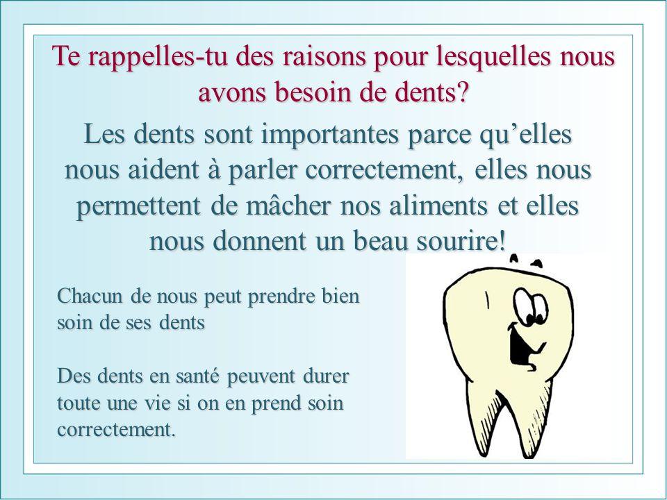 Te rappelles-tu des raisons pour lesquelles nous avons besoin de dents? Les dents sont importantes parce quelles nous aident à parler correctement, el