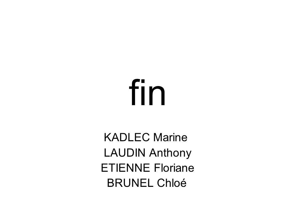 fin KADLEC Marine LAUDIN Anthony ETIENNE Floriane BRUNEL Chloé