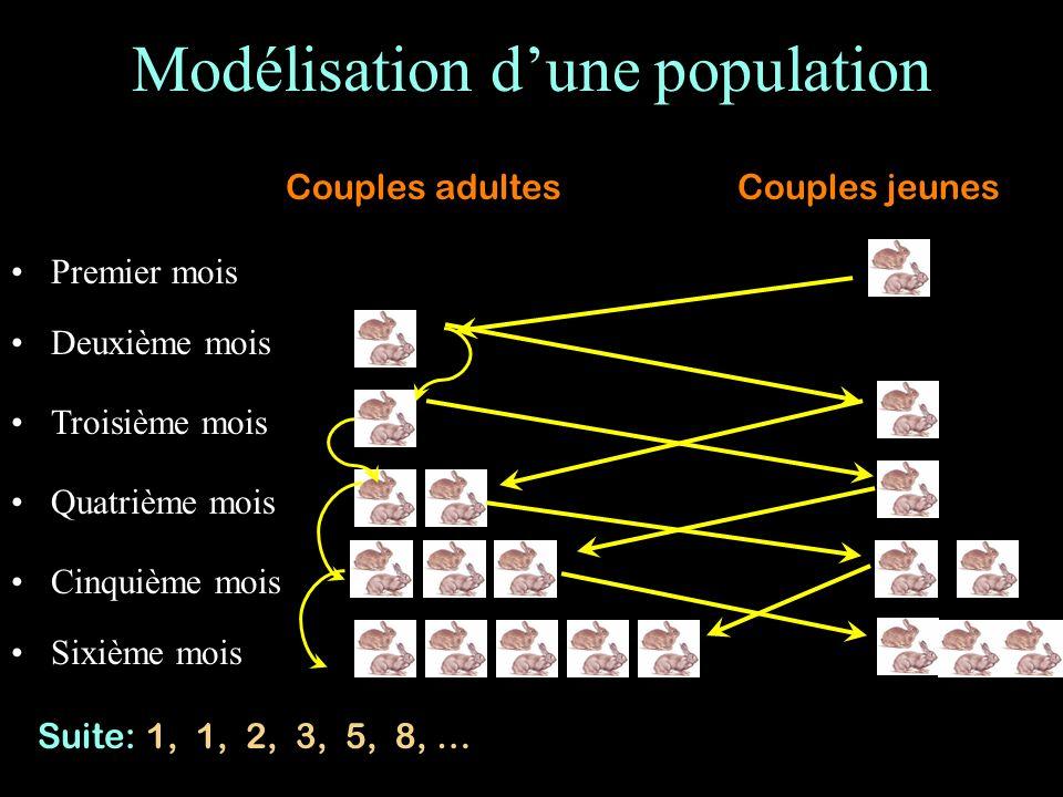 Modélisation dune population Premier mois Troisième mois Cinquième mois Sixième mois Deuxième mois Quatrième mois Couples adultesCouples jeunes Suite: