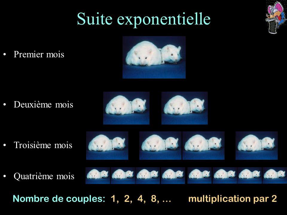 Suite exponentielle Premier mois Deuxième mois Troisième mois Quatrième mois Nombre de couples: 1, 2, 4, 8, … multiplication par 2
