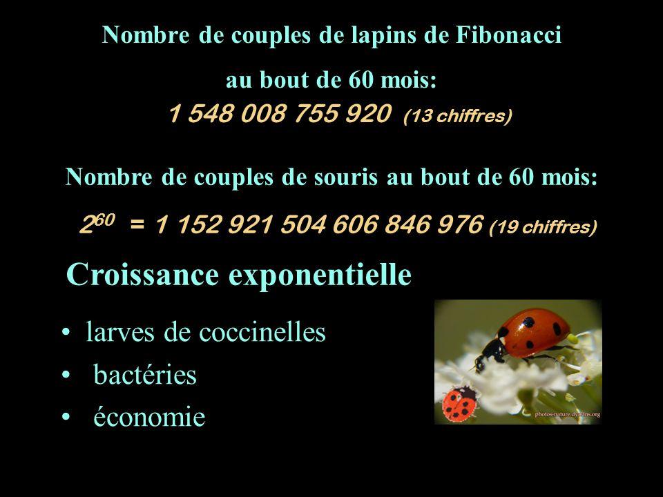 Nombre de couples de lapins de Fibonacci au bout de 60 mois: 1 548 008 755 920 (13 chiffres) larves de coccinelles bactéries économie Croissance expon