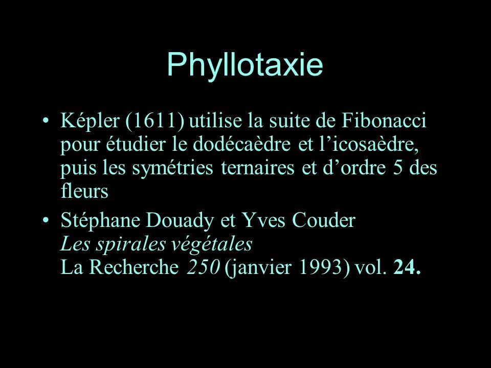 Phyllotaxie Képler (1611) utilise la suite de Fibonacci pour étudier le dodécaèdre et licosaèdre, puis les symétries ternaires et dordre 5 des fleurs