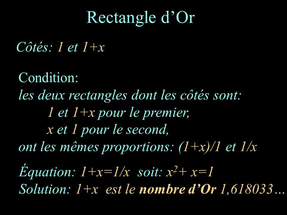 Rectangle dOr Côtés: 1 et 1+x Condition: les deux rectangles dont les côtés sont: 1 et 1+x pour le premier, x et 1 pour le second, ont les mêmes propo